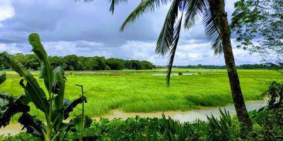 Nature in Bangladesh