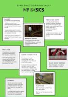 Bird Photography NE1? Basic Bird Photography guide - My basics