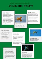 Bird Photography NE1? Basic Bird Photography guide - Where to start guide