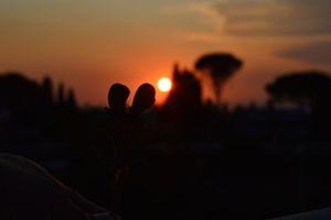COLORFUL SUN