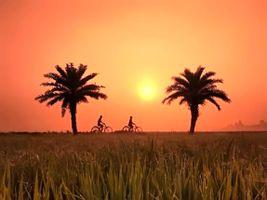 View of beautiful village Bengal