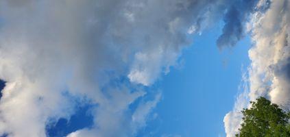 Summer's Sky