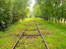 Tracks-way-landscape-travel-preview