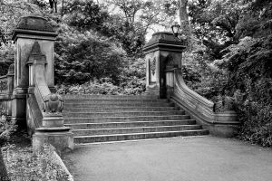 Central Park staircase