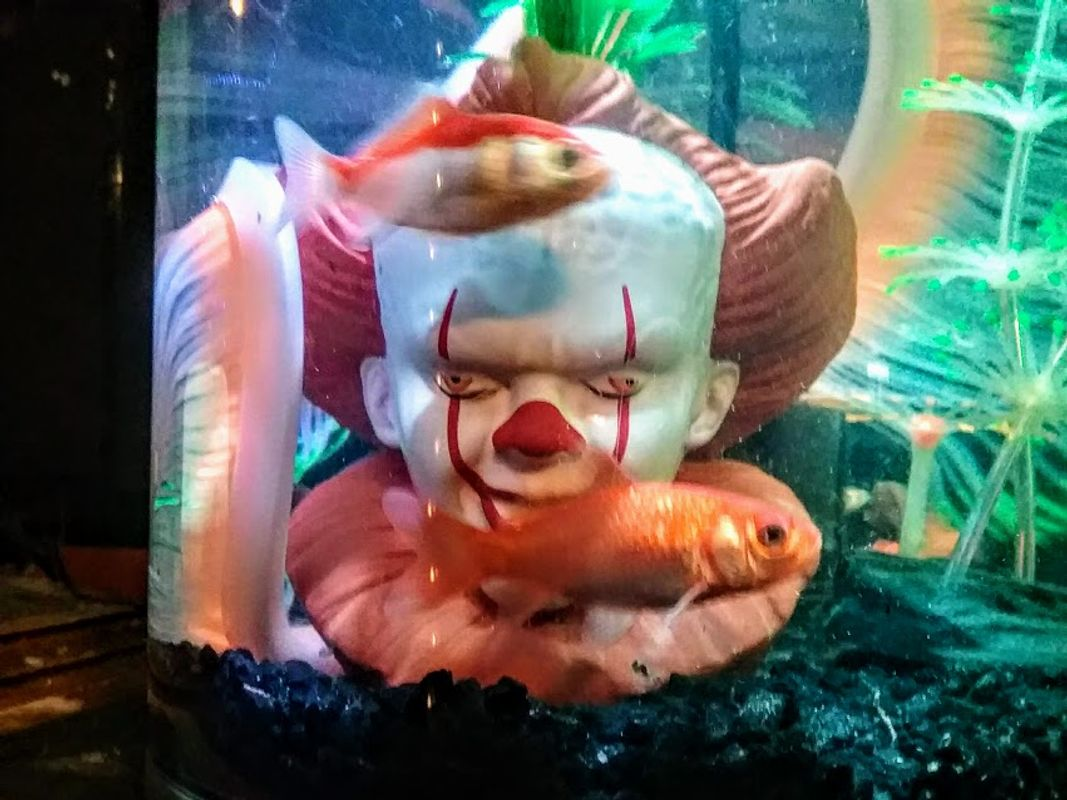 We all float in here
