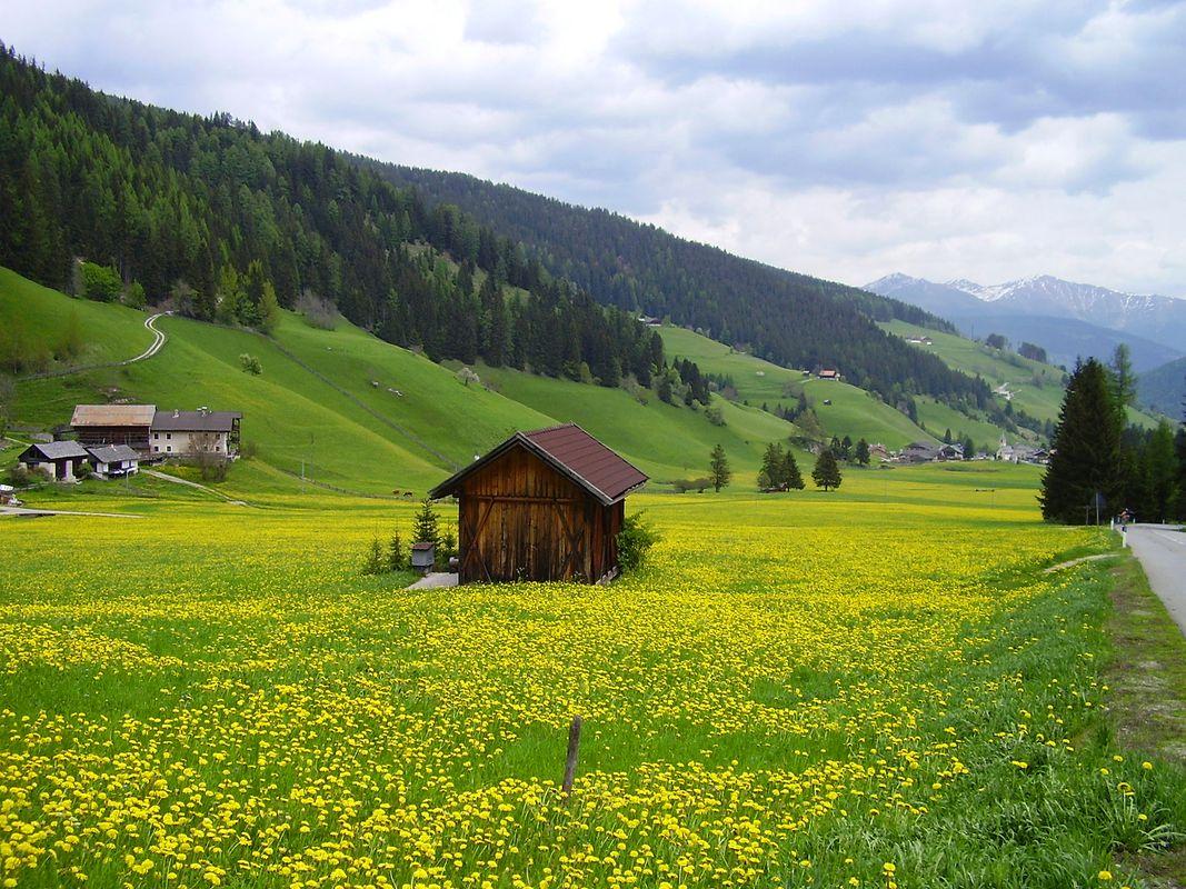 Spring in the Dolomites