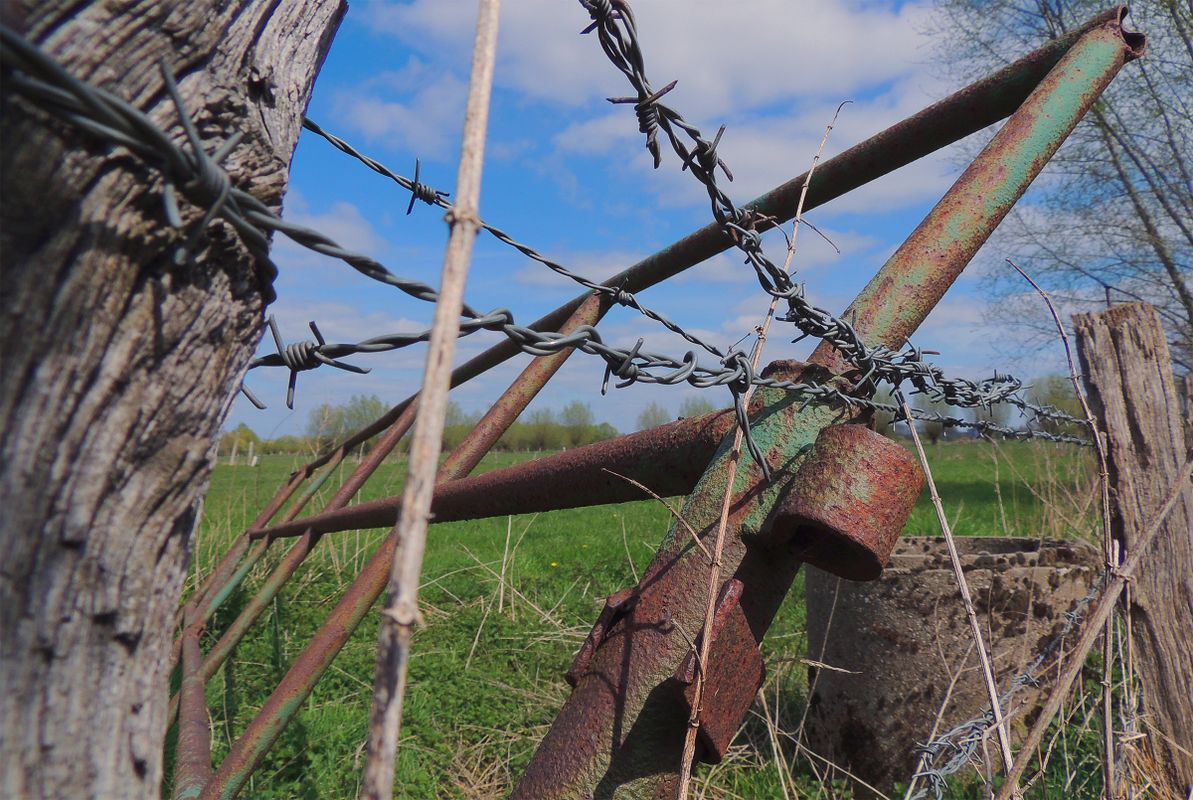 Old rusty green painted iron gate with wooden gate and barbed wire in front of a large field in lunen