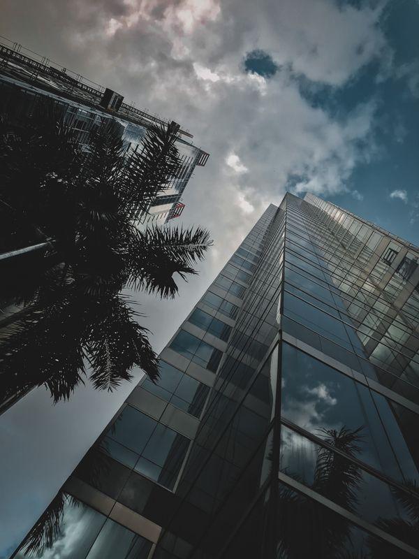 Building x Skies - Upward View
