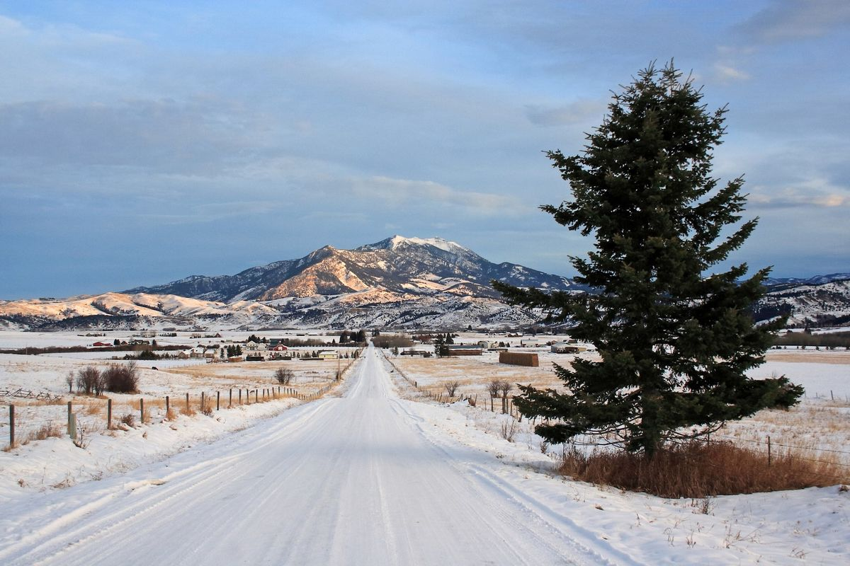 Morning in Montana
