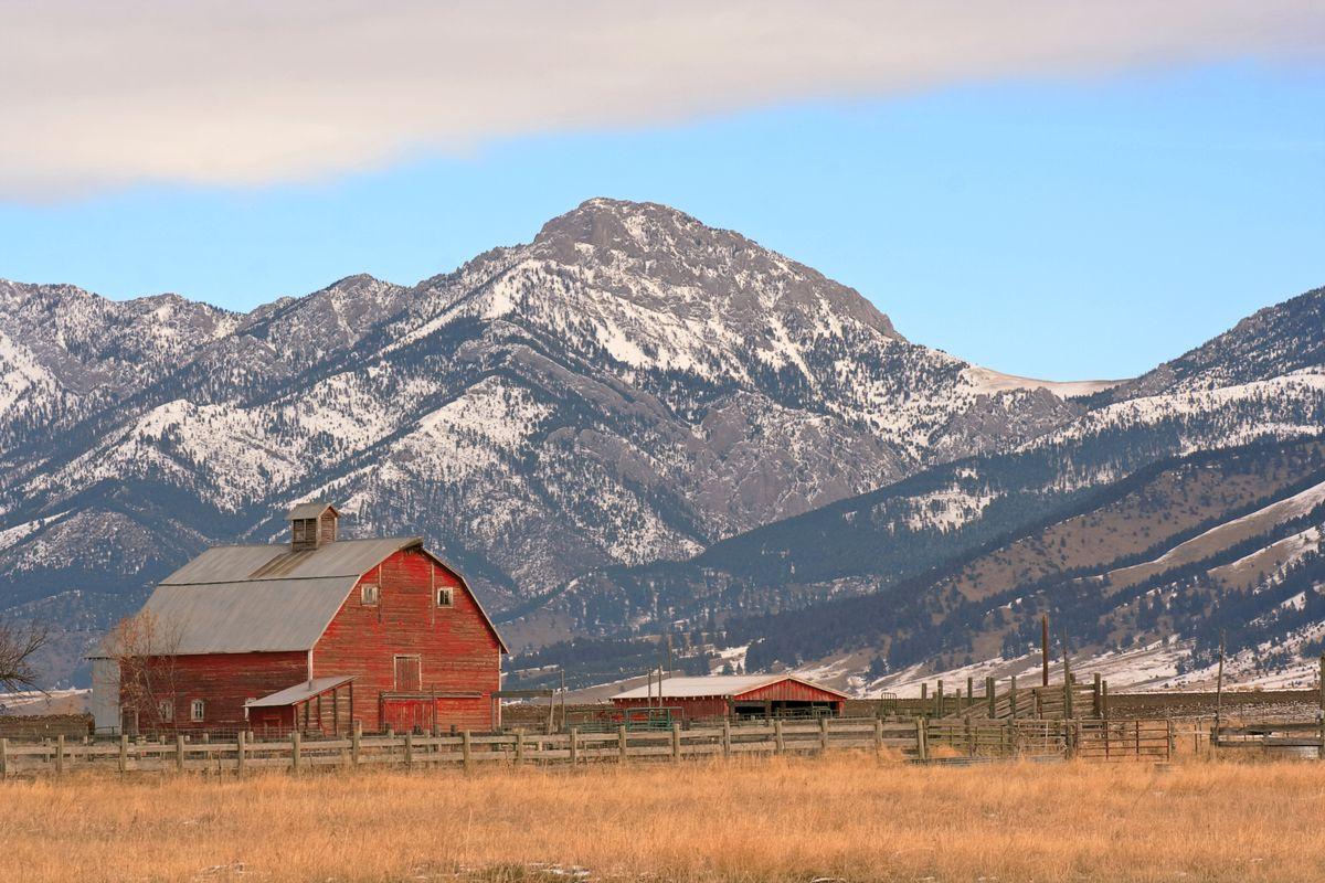 Ross Peak
