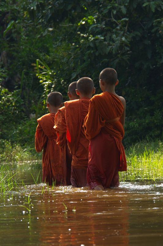 Lo Lei Monastery – novice monks walking through paddy fields