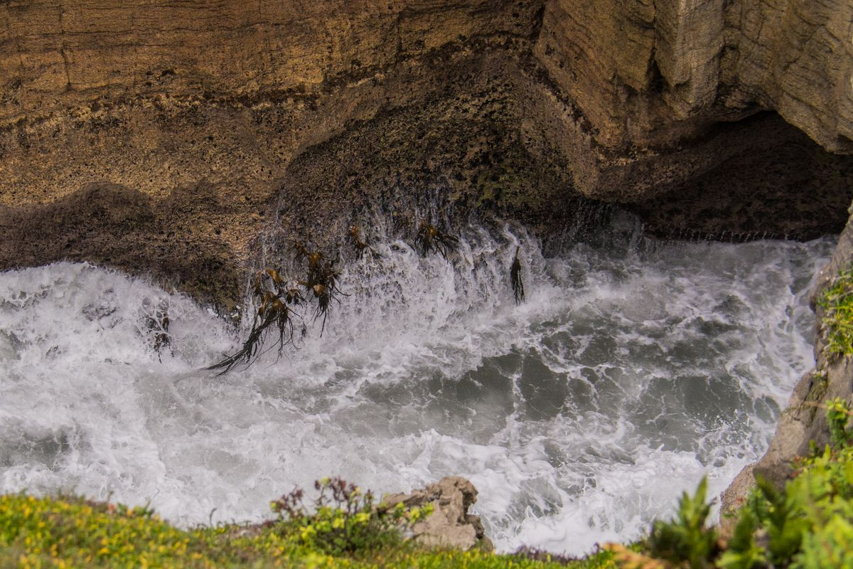 Punakaiki crashing waves against seaweeds