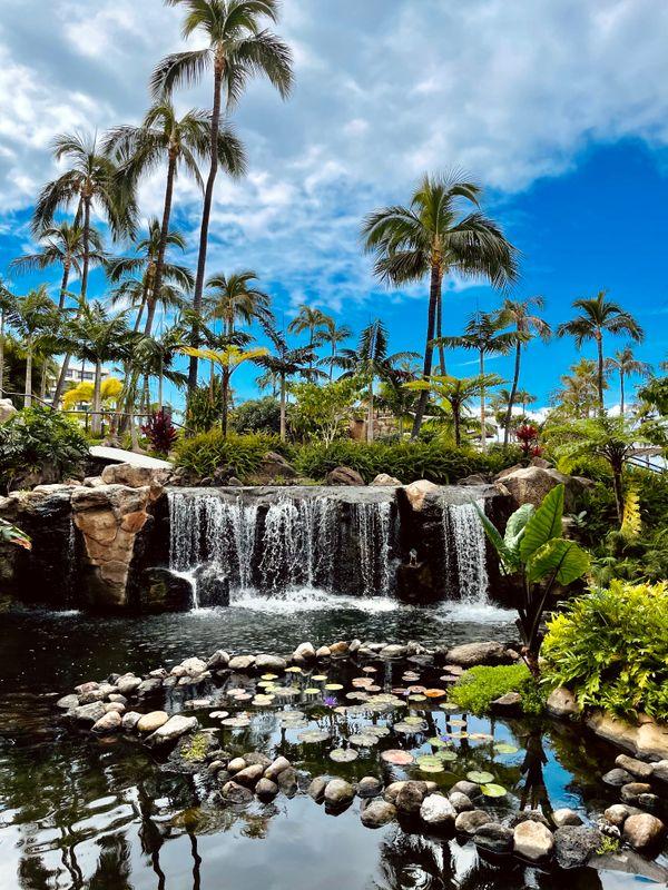 Hawaiian Waterfall --Travel