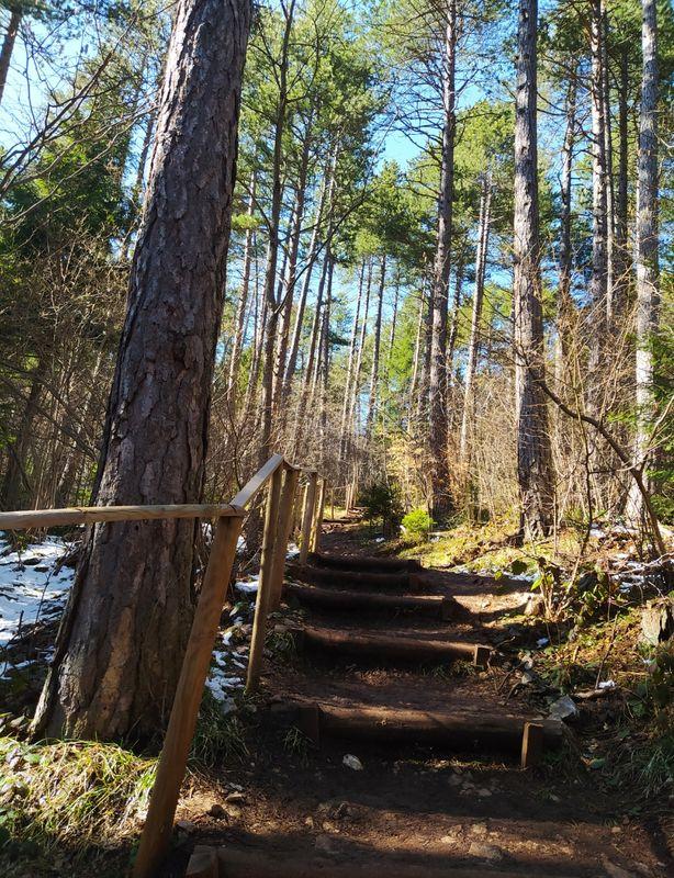 Mountain trail.