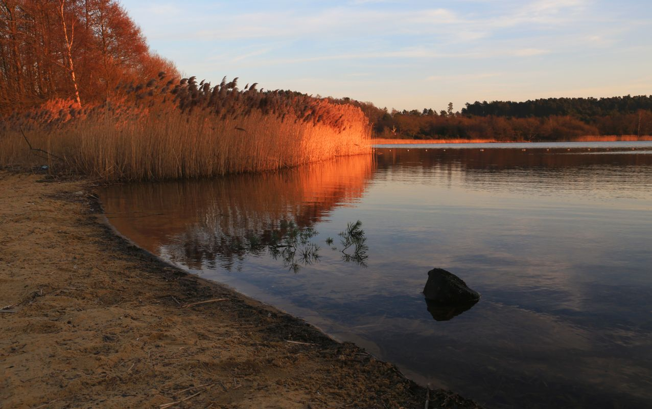 Surrey Hills nature reserve sunset