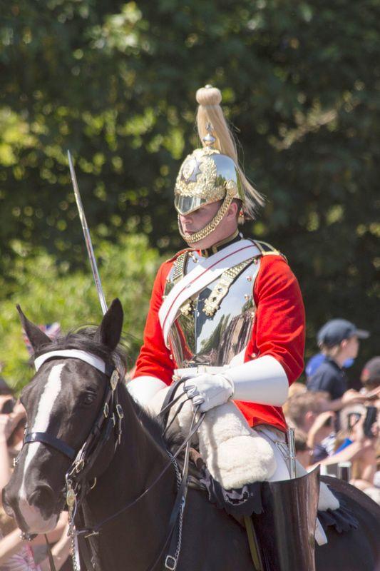 Royal horseman 1