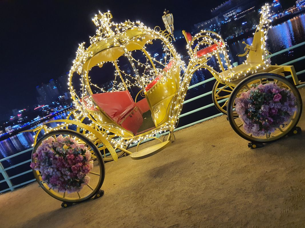 Carriage with lights