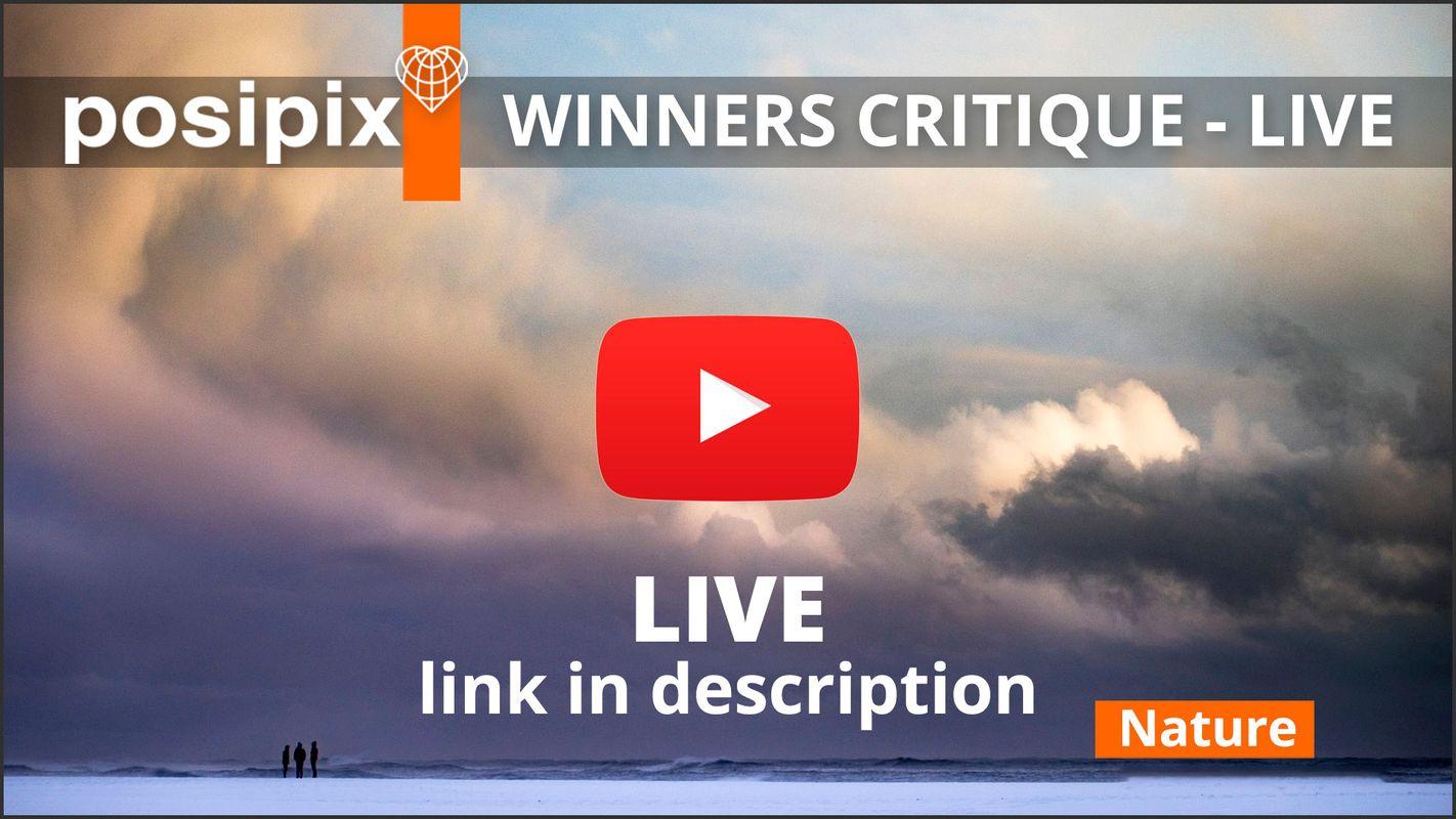 Posipix Winners & Critique - LIVE