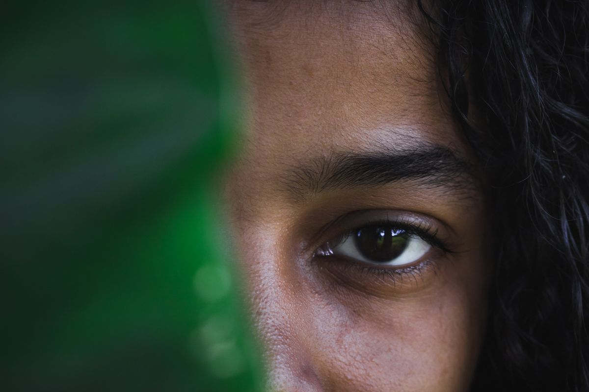 The beautiful dark brown eye