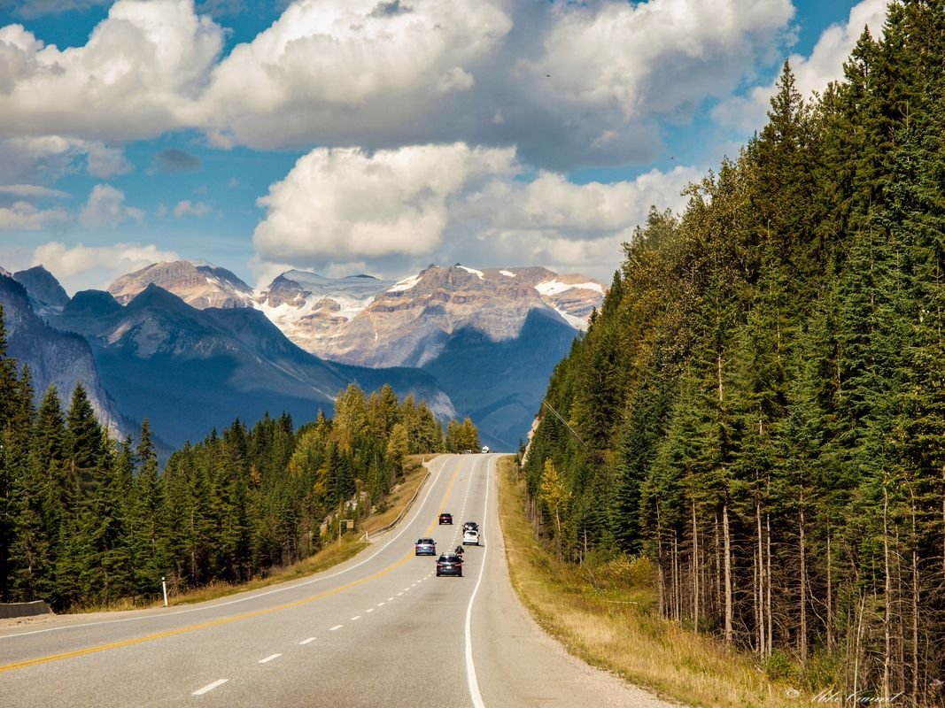 Canada 2012 ( Rocky Mountains ) Rush hour 1