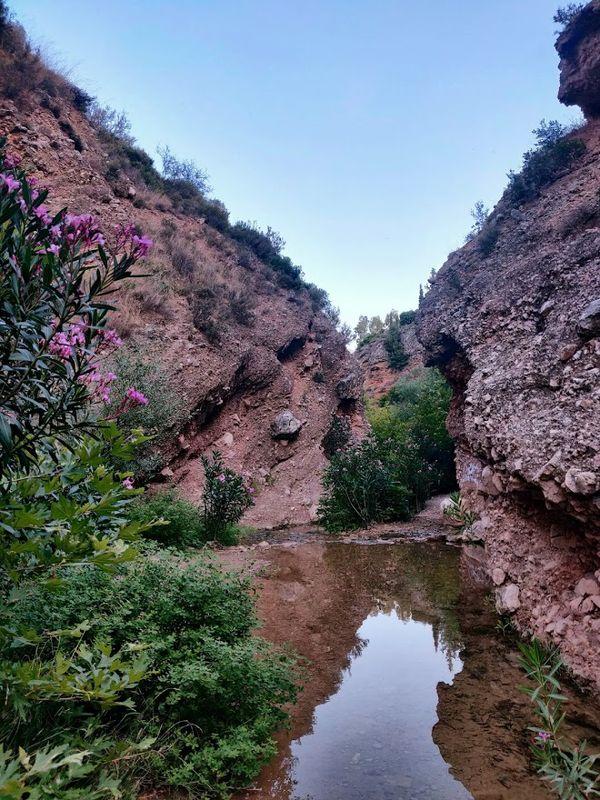 Greek Creek