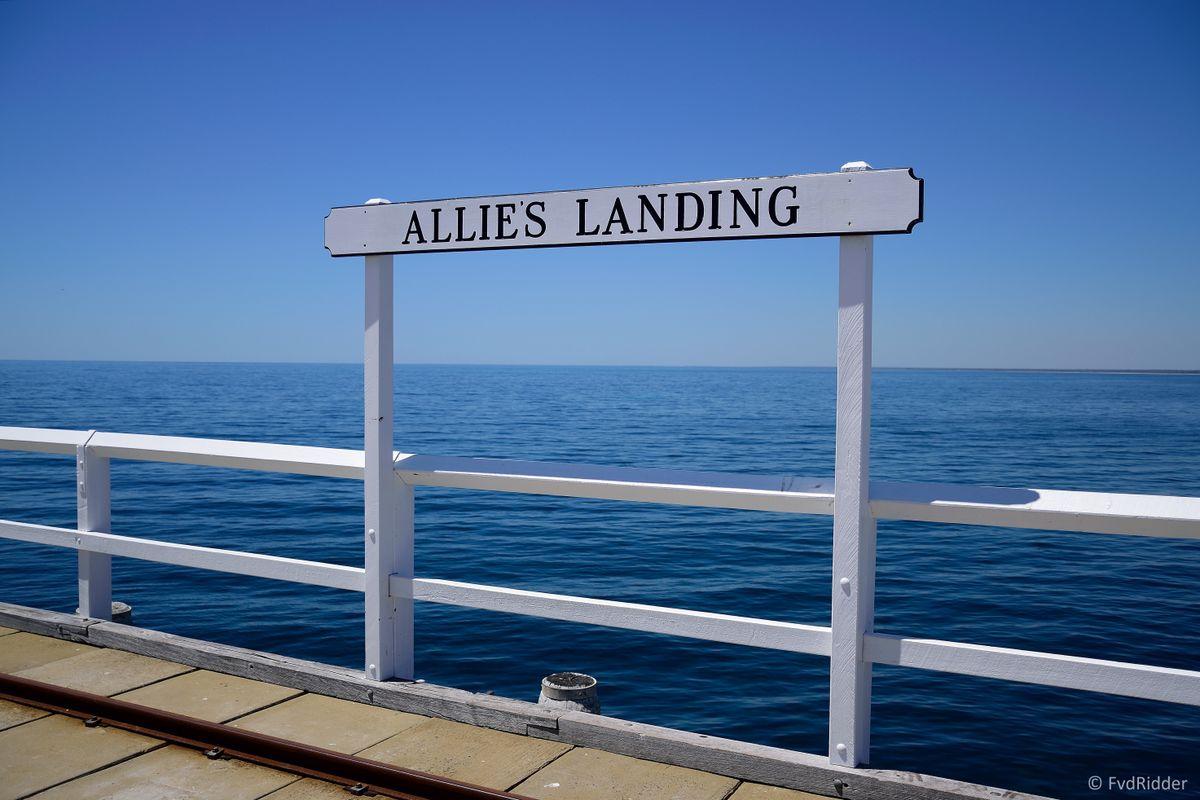 Allie's landing