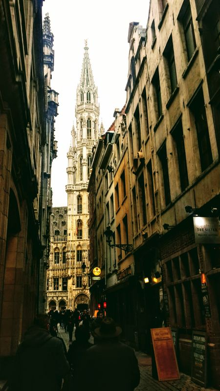 Brussels' City Hall in the background