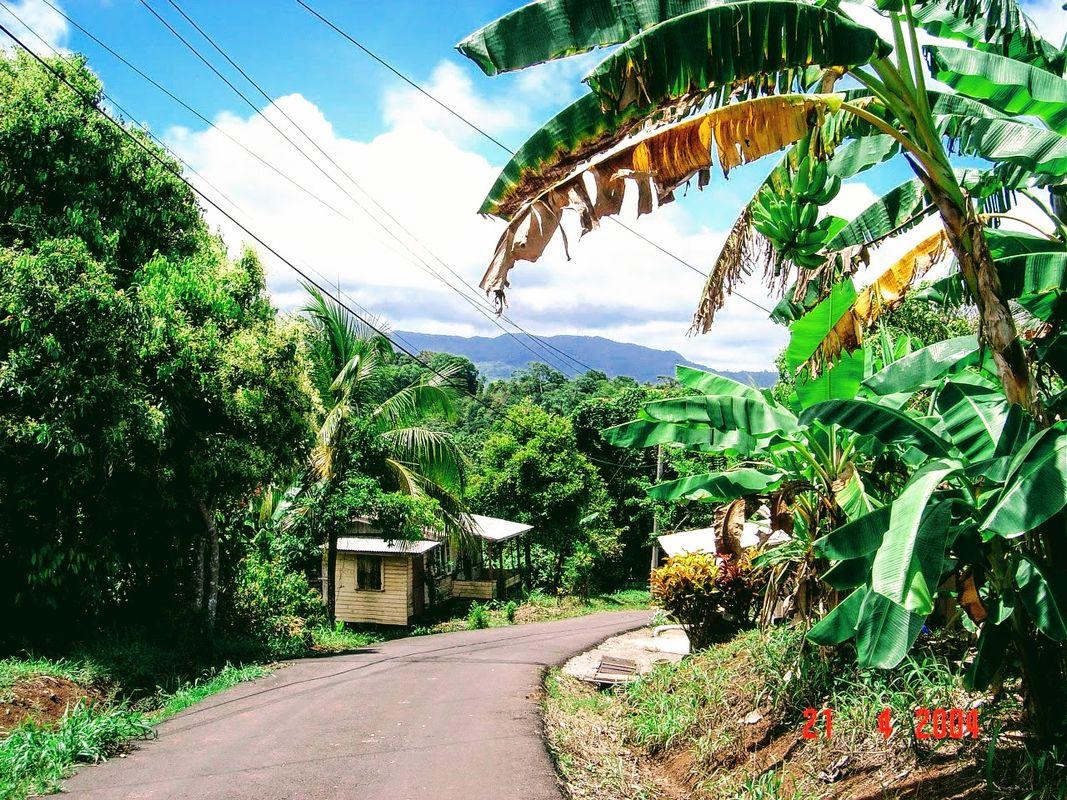 On the road in Grenada, Caribbean