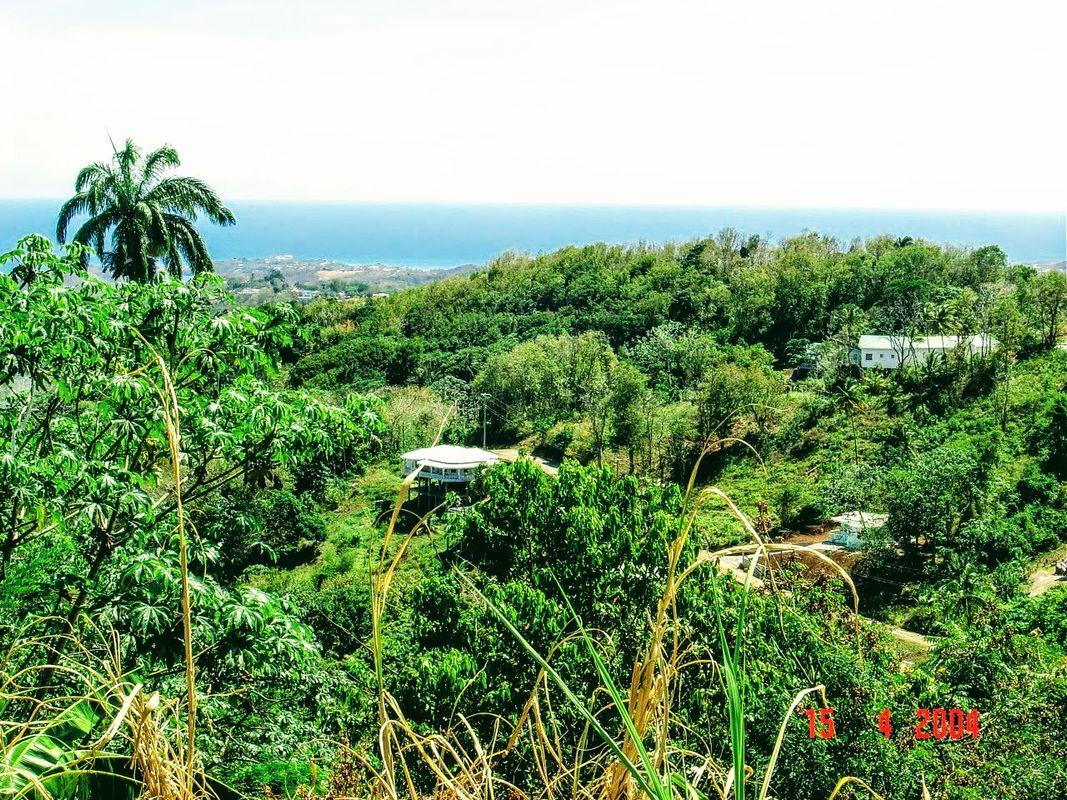 Grenada_ (18)