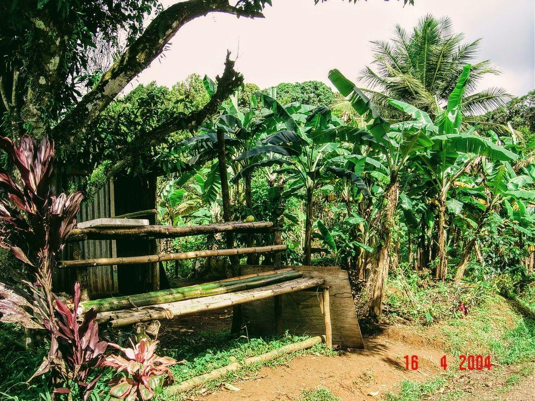 Grenada_ (35)
