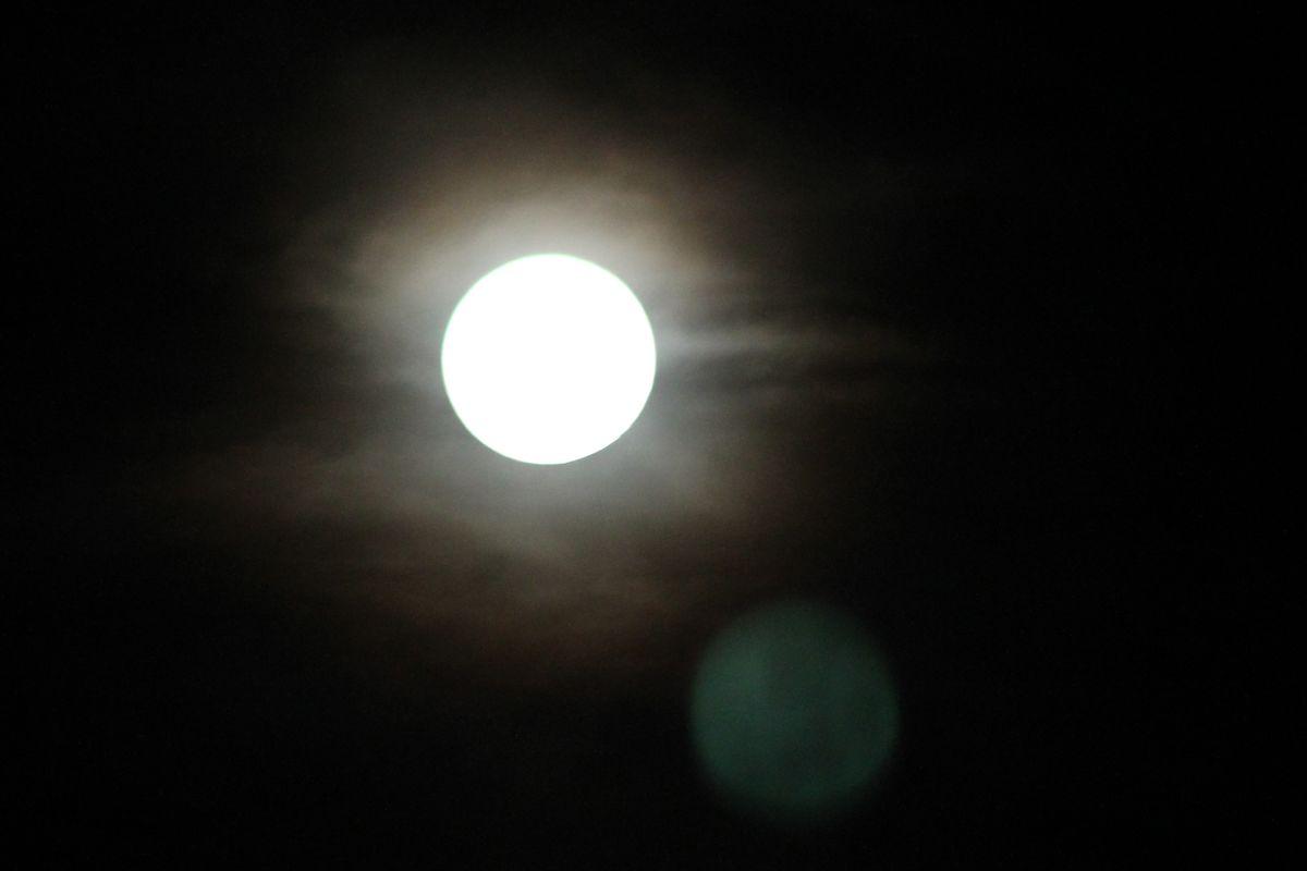 Moon bright.