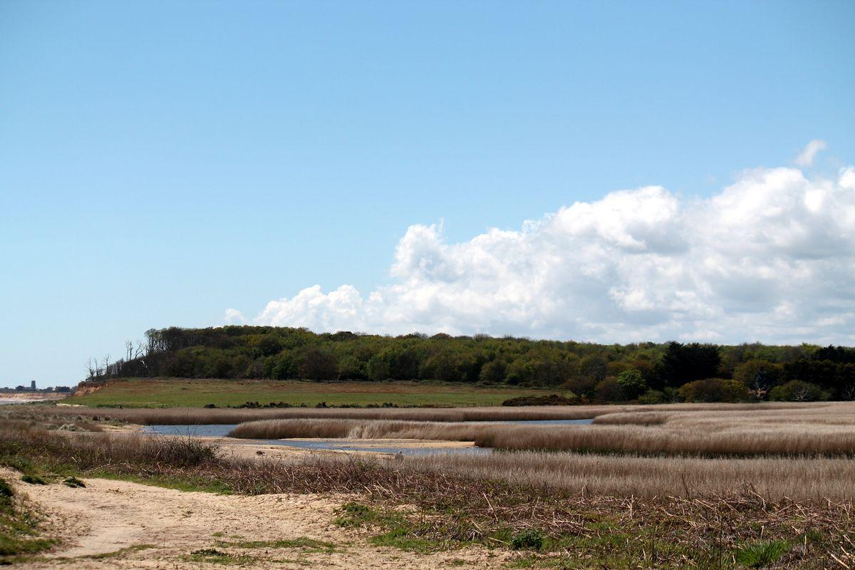 At the beach. Suffolk.