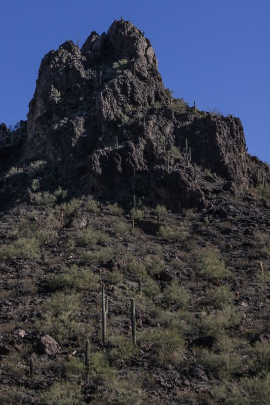 Picacho Peak-13