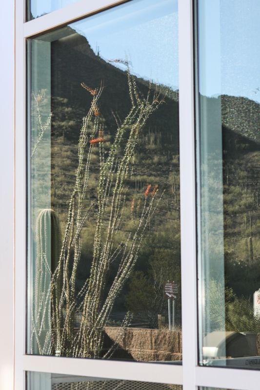 Picacho Peak-16