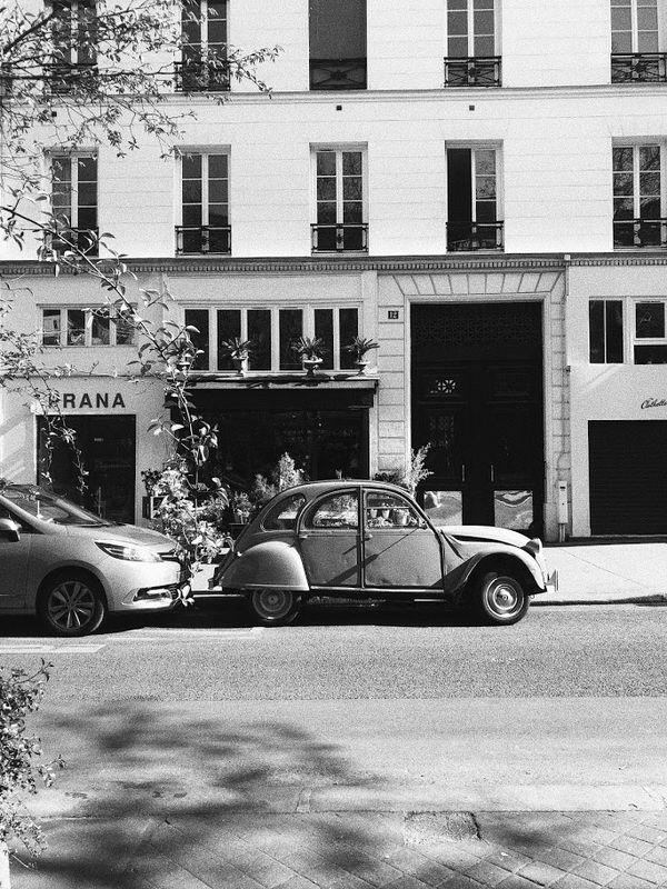 Paris Still in Black and White