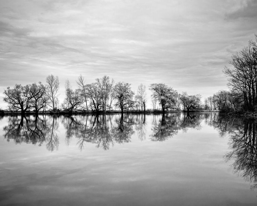 Reflection -1