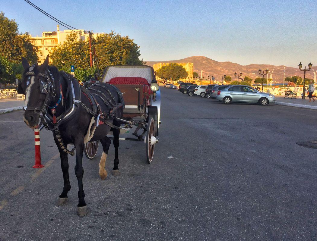 Old ways of transportation...