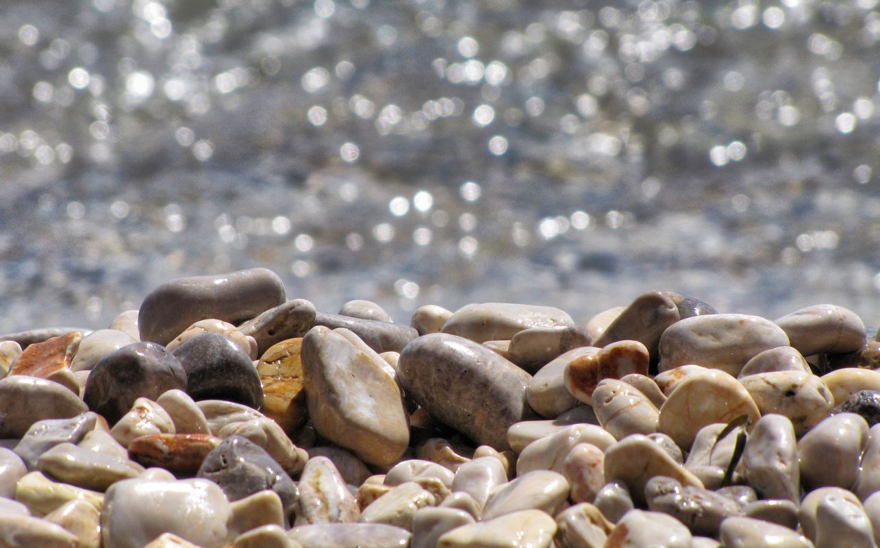 Everywhere beauty by the sea...