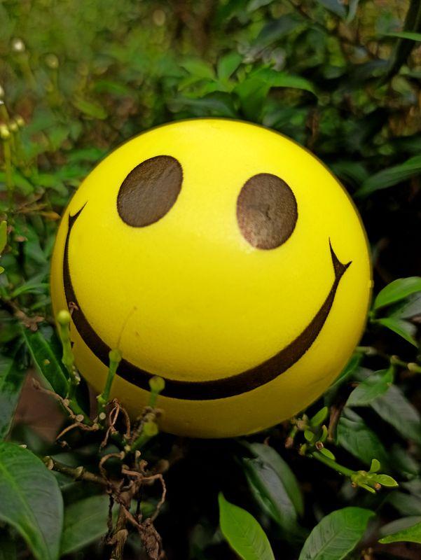 Smiley in Garden