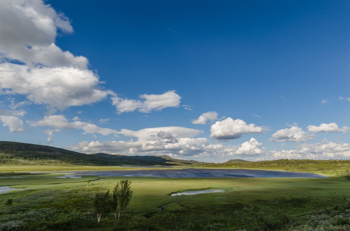 At the arctic mountain, Finnmarksvidda
