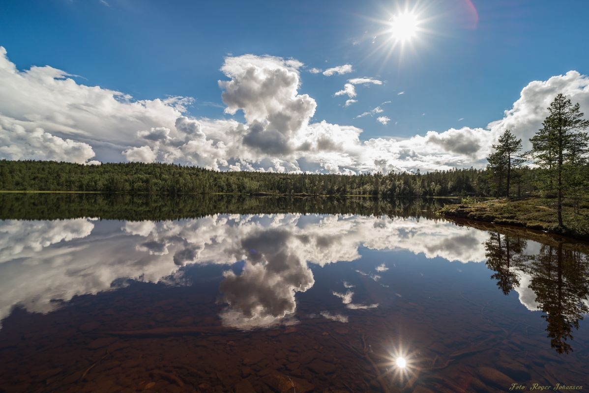 Quiet lake with reflections
