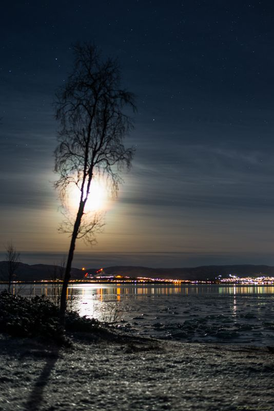 Late evening moon above Altafjord