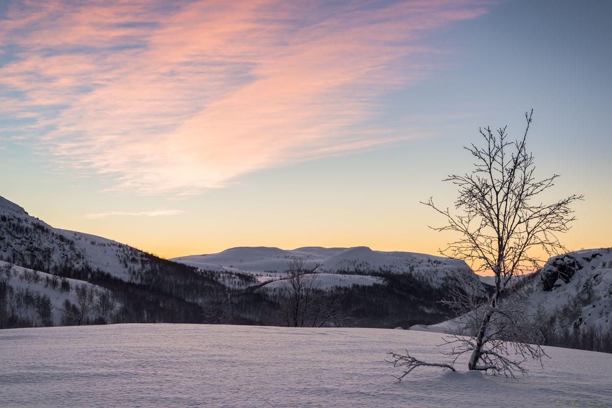 Beautiful January colors
