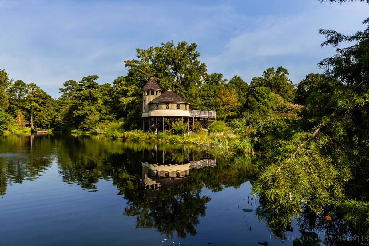 Pavilion by the lake