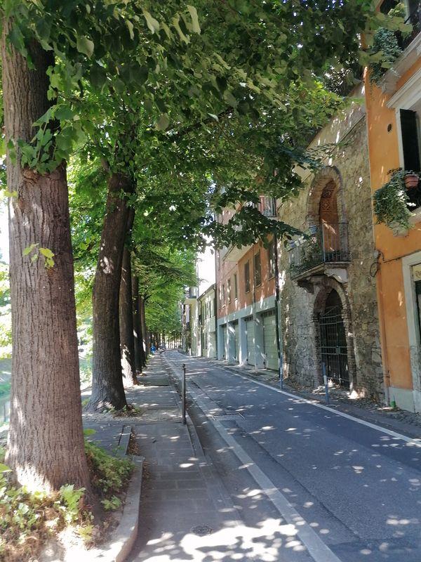 strada lungo il fiume, Padova - road along the river, Padua