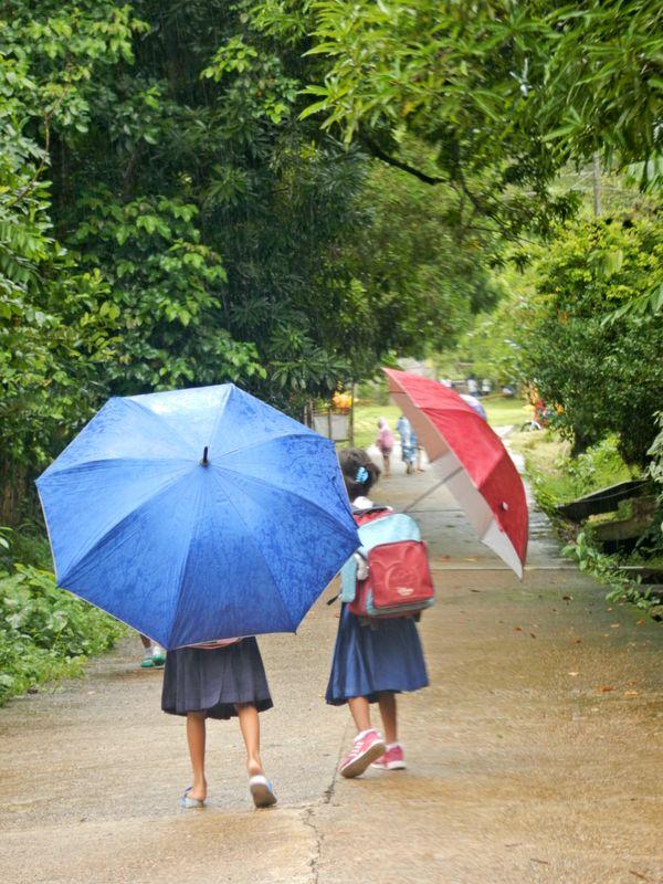 School Girls with their Umbrellas
