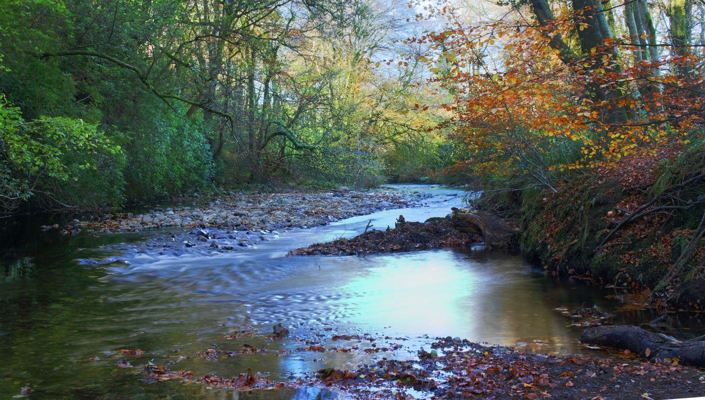 River calder (2)