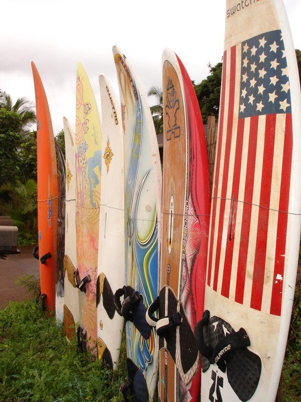 WWG1WGA Surf Nation