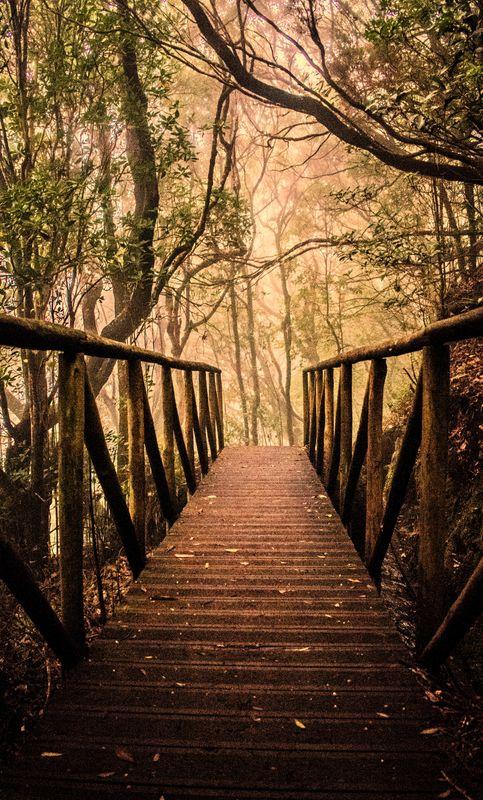 Mysterious small bridge