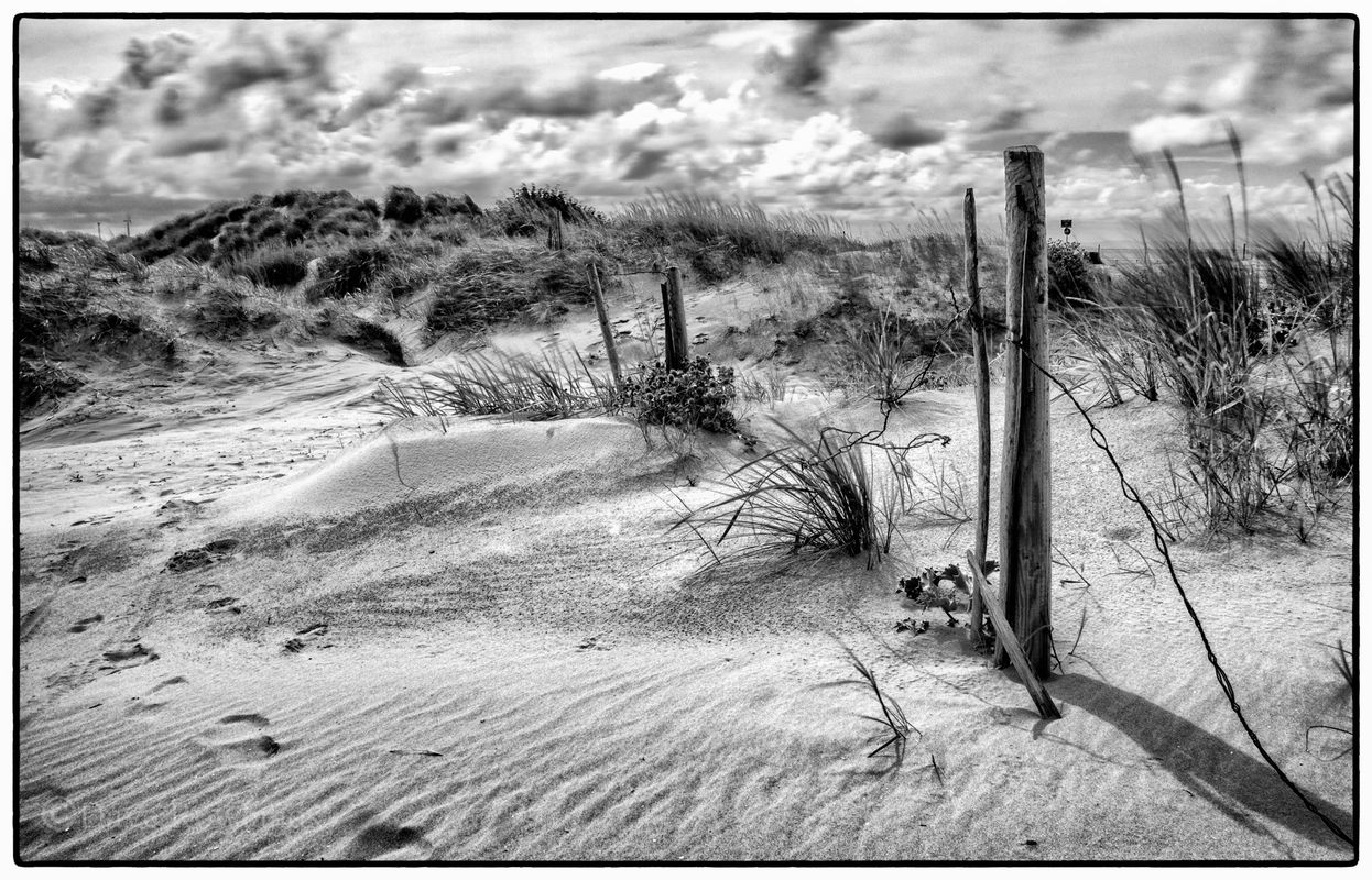 Posts in the sand